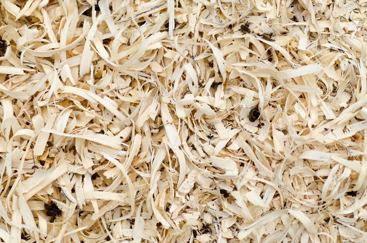 Spaanplaat: het meest veelzijdige stuk hout!