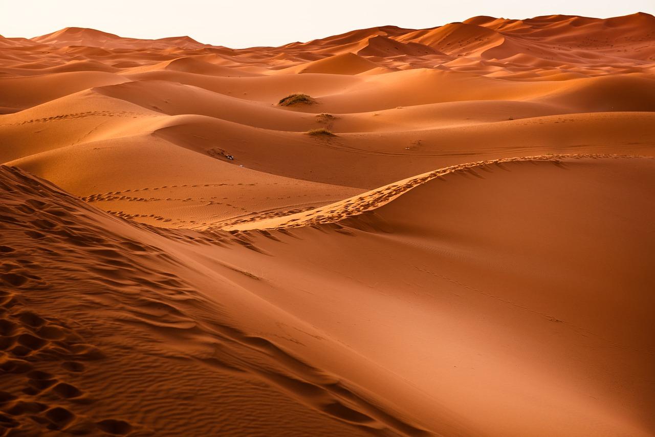 Zon, woestijn en cultuur: ga op vakantie Marokko
