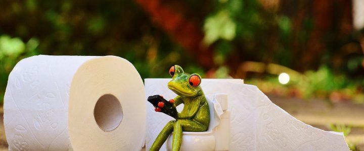 WC papier bestellen op de meest moderne manier