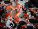 Houtskoolbarbecue aankrijgen